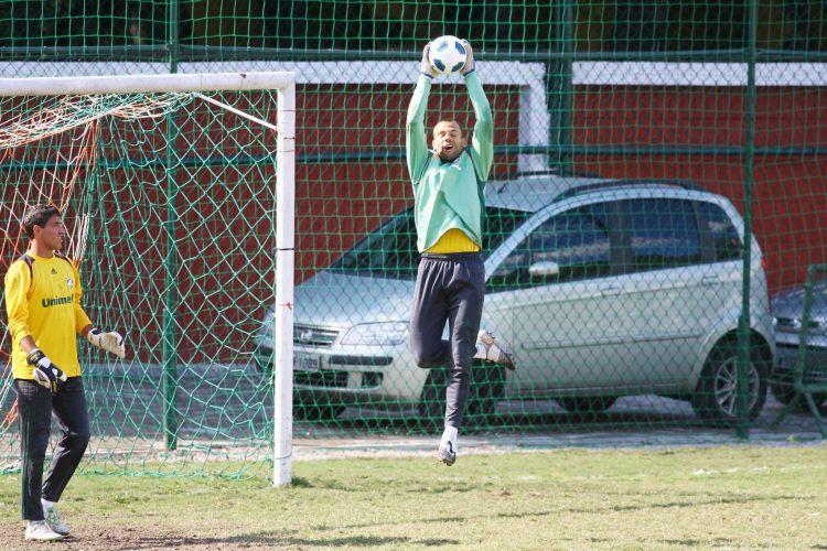 Goleiro Diego Cavalieri fez boas defesas na vitória sobre o Avaí e conquistou a confiança do técnico Abel Braga