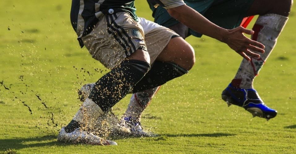 Jogadores de Palmeiras e Portuguesa disputam bola em gramado alagado do Palestra Italia