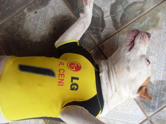 Alexandre Melo publicou foto em que até o cachorro usa a camisa do goleiro do São Paulo