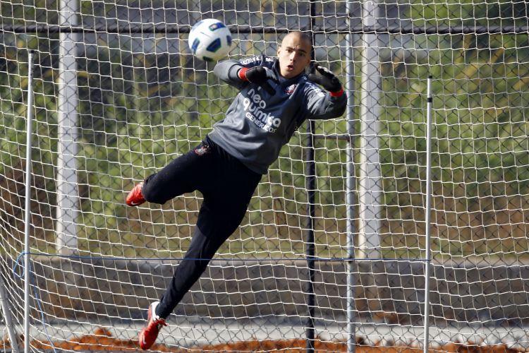 Goleiro Julio César treina nesta terça-feira. Atividades foram marcadas pela apresentação do reforço Emerson, ex-Fluminense