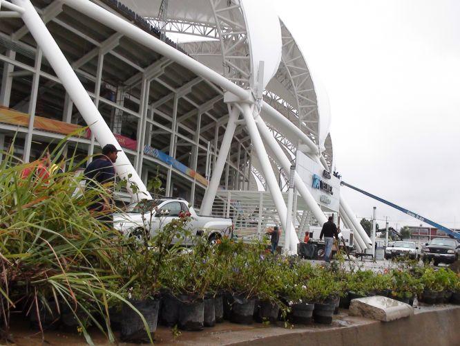 Plantas separadas para enfeitar o estádio não puderam ser plantadas ainda por culpa da chuva