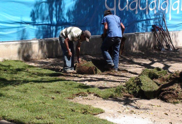 Os funcionários ajeitam os tufos de grama do lado externo do estádio de atletismo