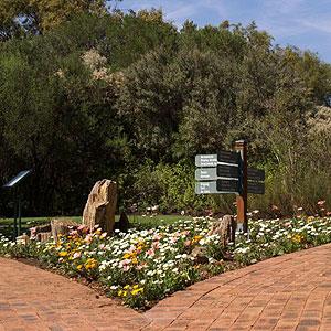 Segura e limpa, Bloemfontein sabe combinar a tranquilidade rural com o agito da metrópole