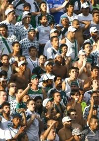 Torcida do Palmeiras não deverá lotar o Palestra contra o Boca Juniors na despedida do estádio
