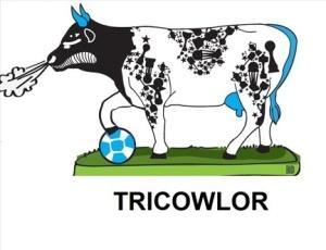 Designer Chico Baldini projetou a vaca 'Tricowlor'
